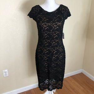 DRESS BARN Black and Nude Lace Dress